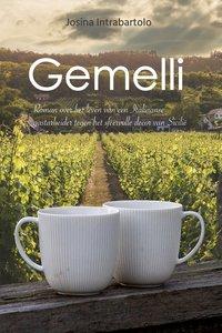 Gemelli (E-book)